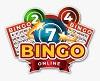 Top Rated Online Bingo Casinos Canada