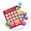 How To Play Online Bingo Guide for Canadians